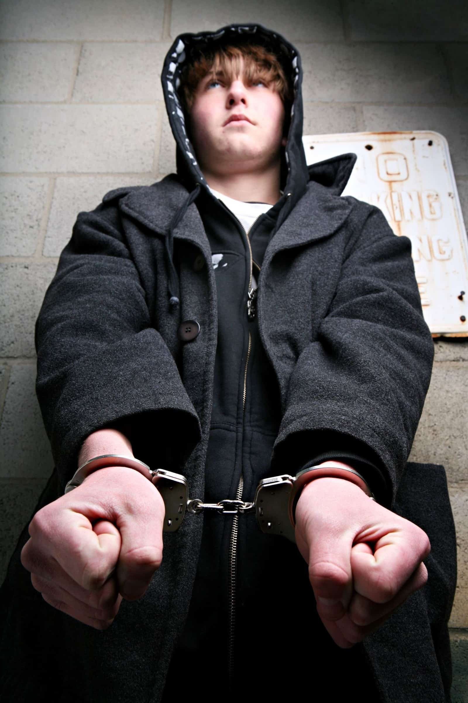 juvenile delinquency and juvenile crime article Regardless of the causes, juvenile delinquency carries a high cost to the american system these costs can be measured in terms of money spent and lost, as well as moral costs to a society government is forced to pay more for increased policing, as well as the costs of the entire judicial system process (prisons, juvenile halls, court trials.